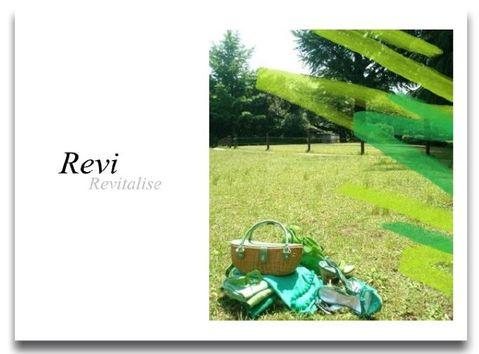 Revi2top