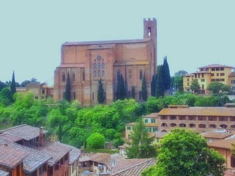 Siena7