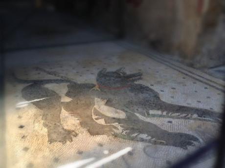 Pompei8_2