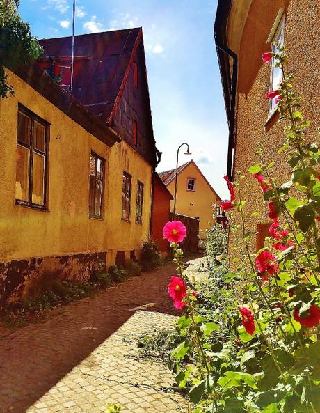 Gotland03