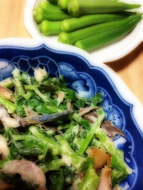 Shimagohan1