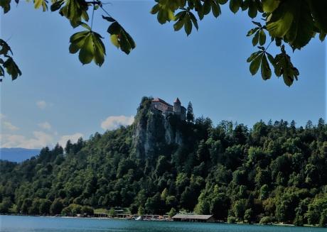 Blejsko-jezero